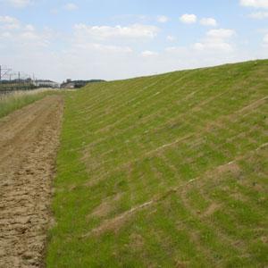 Greenfix Eromat - organiniai dembliai be sėklų